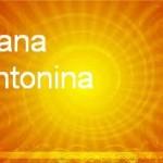 Ioana Antonina