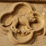 Adultul Leu