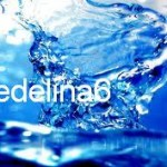 Medelina6