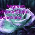 Negrean Adriana Clara Sebastiana
