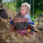 Cainele si pisica Pesti, saptamana 25 – 31 martie 2012