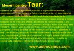 Job zodia Taur
