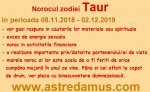 Norocul in 2019 la zodia Taur